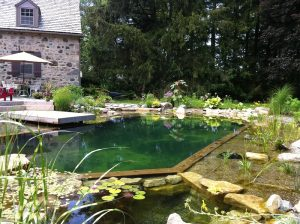 Above And Below: This Pool Is The First BioNova® Natural Swimming Pool Ever  Built In Ontario, Canada. It Is A One Pot Design, Meaning The Regeneration  Zone ...