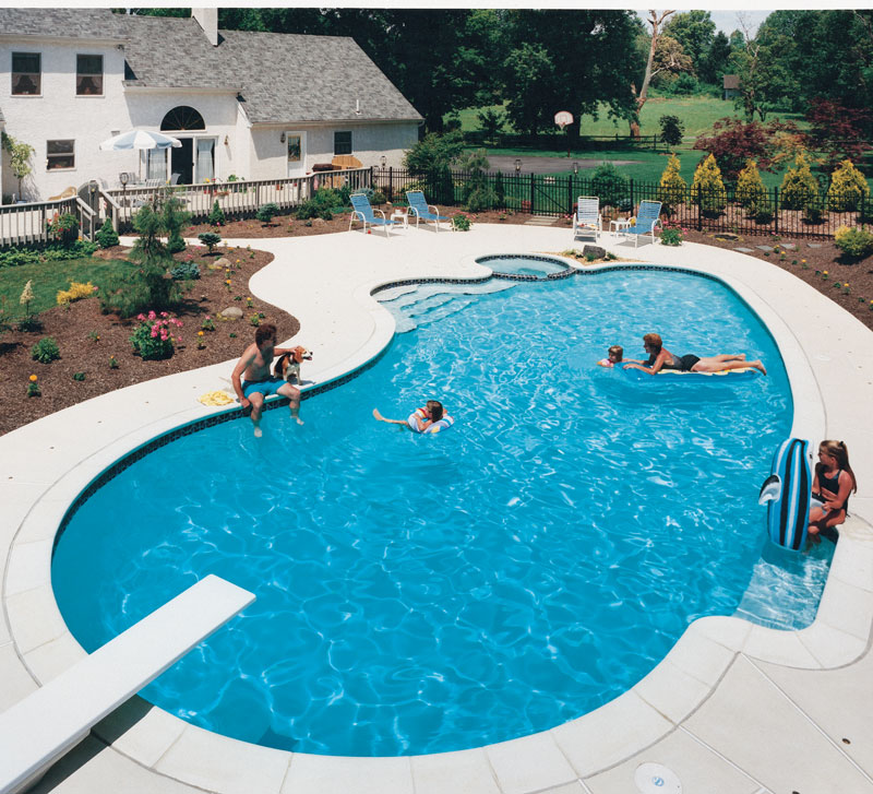 pool shape top 8 swimming pool shapes luxury pools outdoor living 3161
