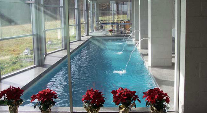 Building an indoor pool what you need to know luxury for Indoor lap pool cost